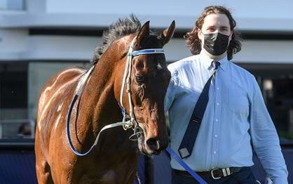 Lexus Melbourne Cup field starts to takes shape