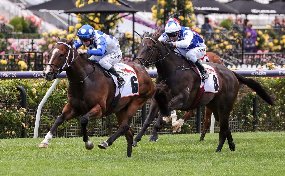 G.H. Mumm Century Stakes Wrap