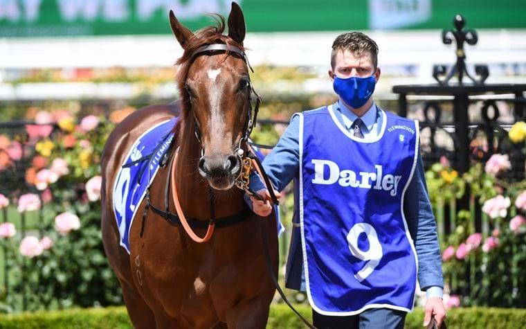 Darley Ottawa Stakes Wrap