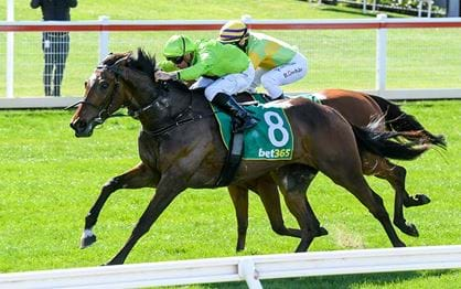 Tralee Rose out to make history in the Lexus Melbourne Cup
